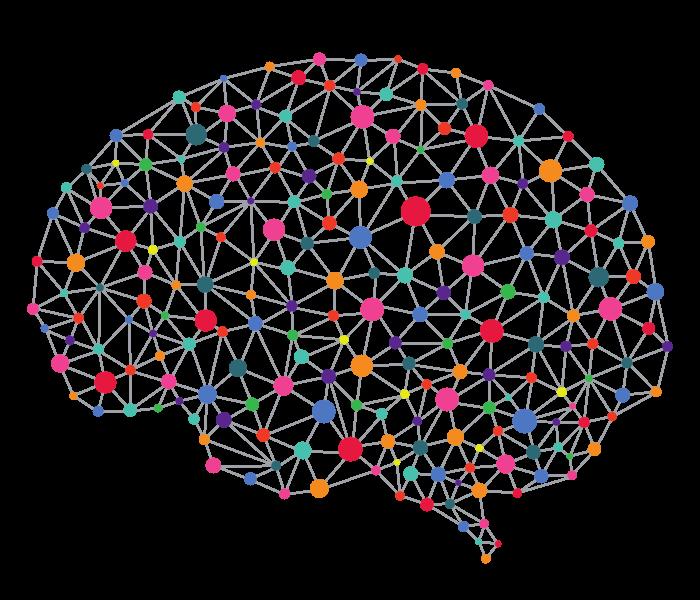 27 нейромозг